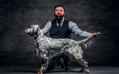 The American Kennel Club And ESPN Ink Multi-Year Agreement For Dog Competitions