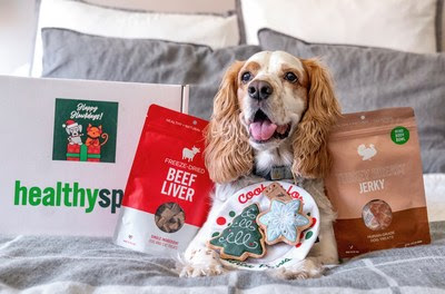 Healthy Spot Brings The Holiday Cheer For Pets With The Perfect Gift Guide