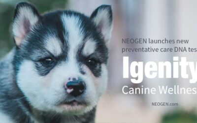 Neogen Launches New Preventative Care DNA Test, Igenity® Canine Wellness