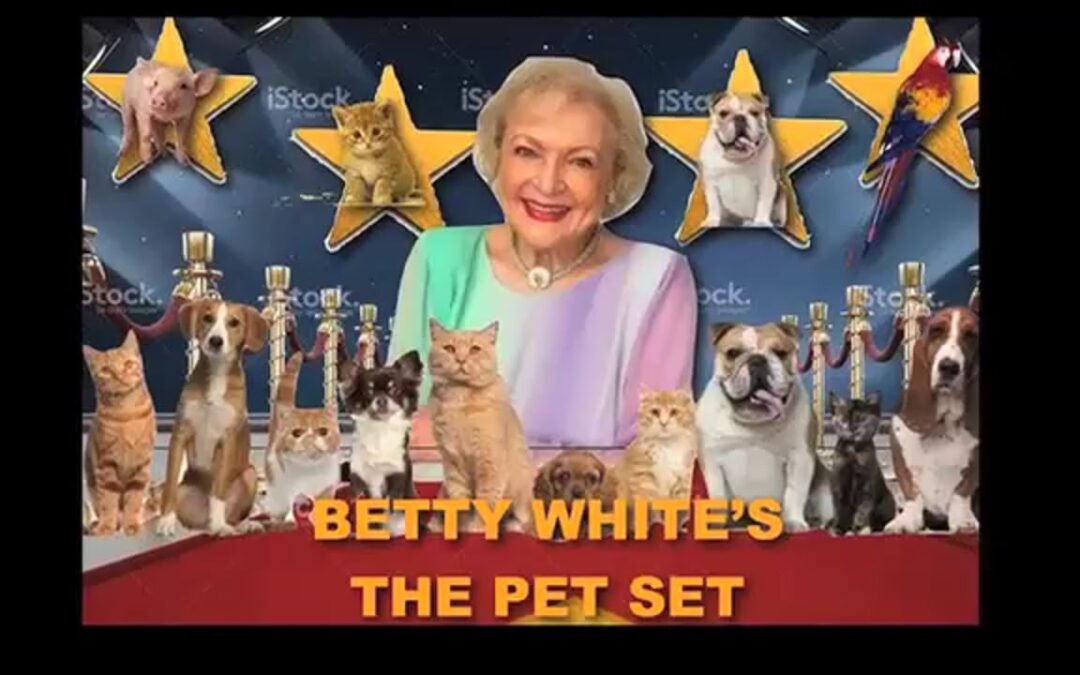 TV Icon Betty White's Pet Show Returns After 50 Years